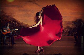flamenco Malaga